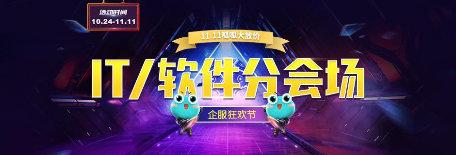 11.11 企服狂欢节 IT/软件分会场